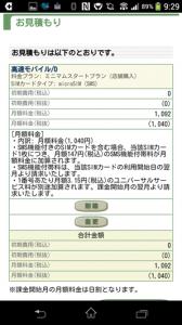 bic-sim09