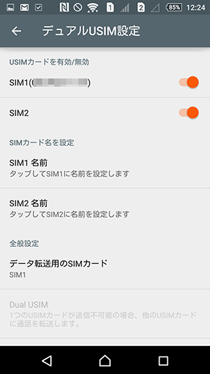 dual-sim04